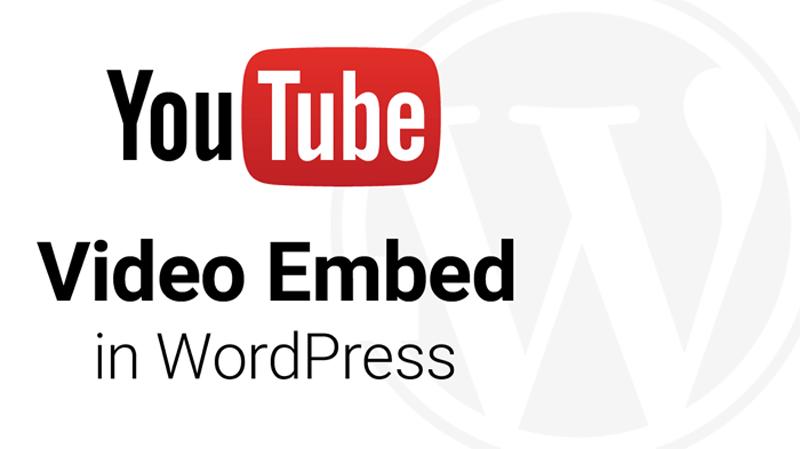 Chèn video vào wordpress