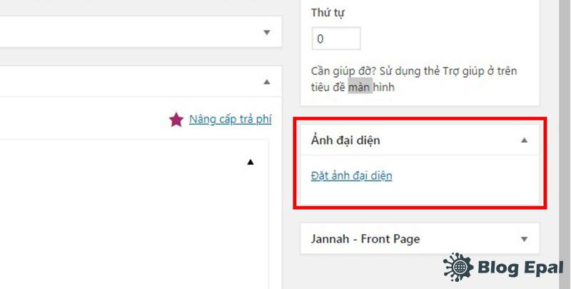 Anh-dai-dien-cua-trang-trong-website-wordpress