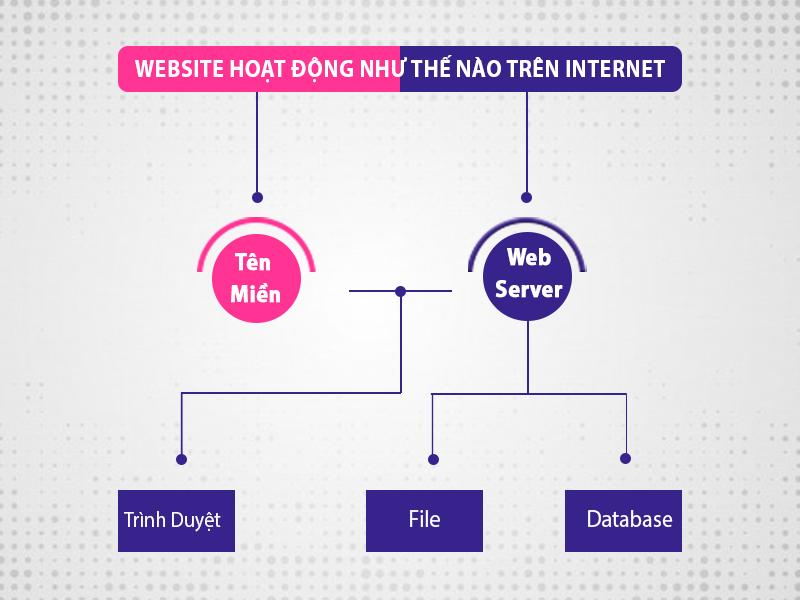 Tim-hieu-cach-hoat-dong-cua-website-tren-internet (1)